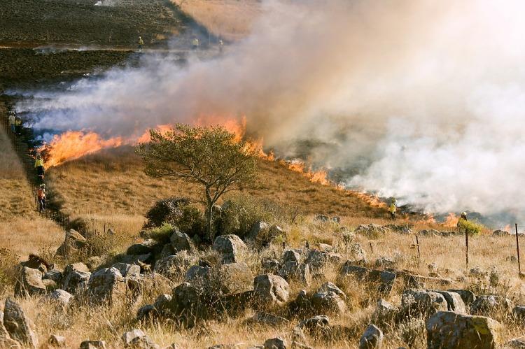 grass-fire-807388_1280